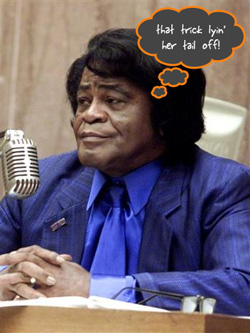 Somebody Else Wants a Piece of James Brown's Will