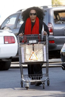 Diana Ross grocery shopping in Beverly Hills (Mar. 25th 2009)
