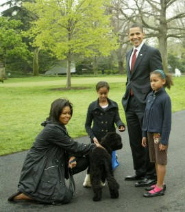 The First Family (The Obamas) playing with their new dog Bo in D.C. (Apr. 14th 2009)