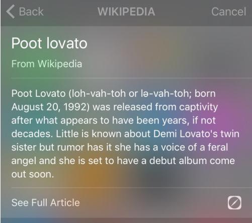 poot-lovato-wiki