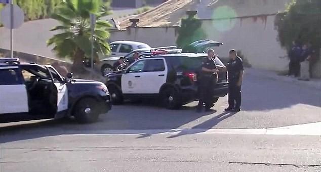 Chris-Brown-LAPD